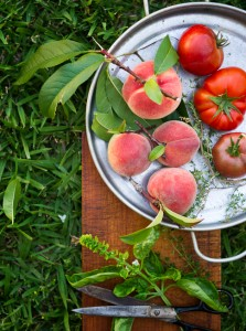 Tomates and Peaches