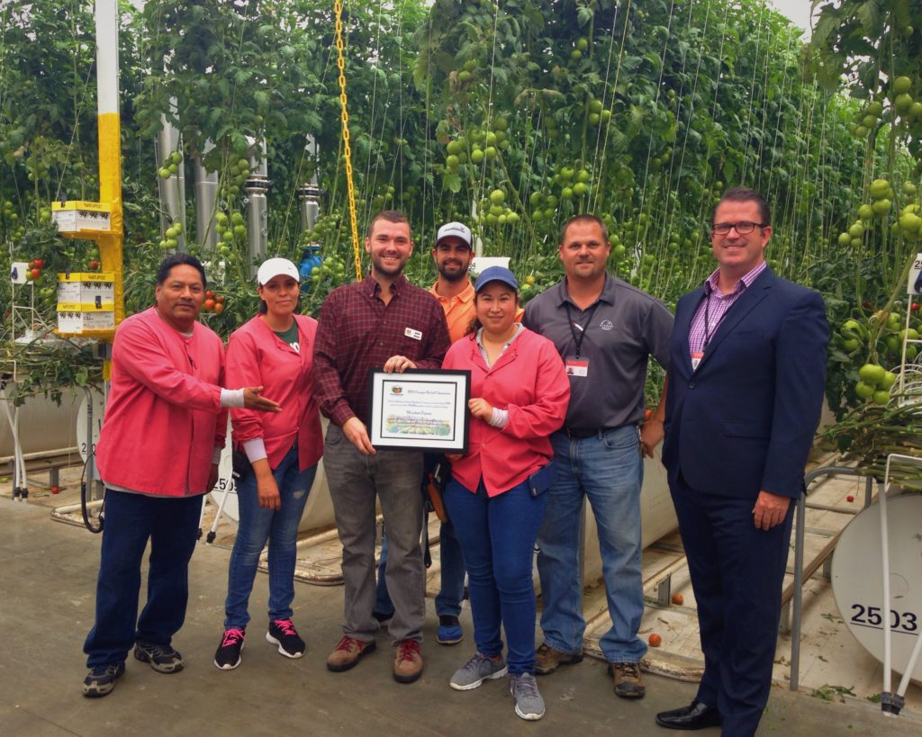 Pablo Hernandez, Erika Perez, Jamie Nichols Foodbank SBC COO, Mason Duarte – Assistant Grower, Griselda Herrera, Tim de Kok – Senior Grower, and David Wesley – VP Construction & Development in the Windset Farms Greenhouse